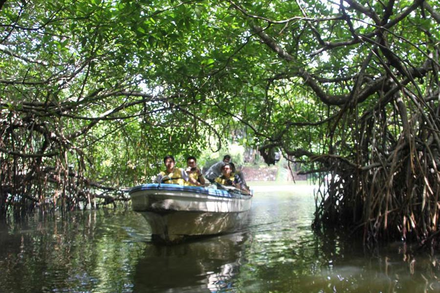 during the boat safari Image