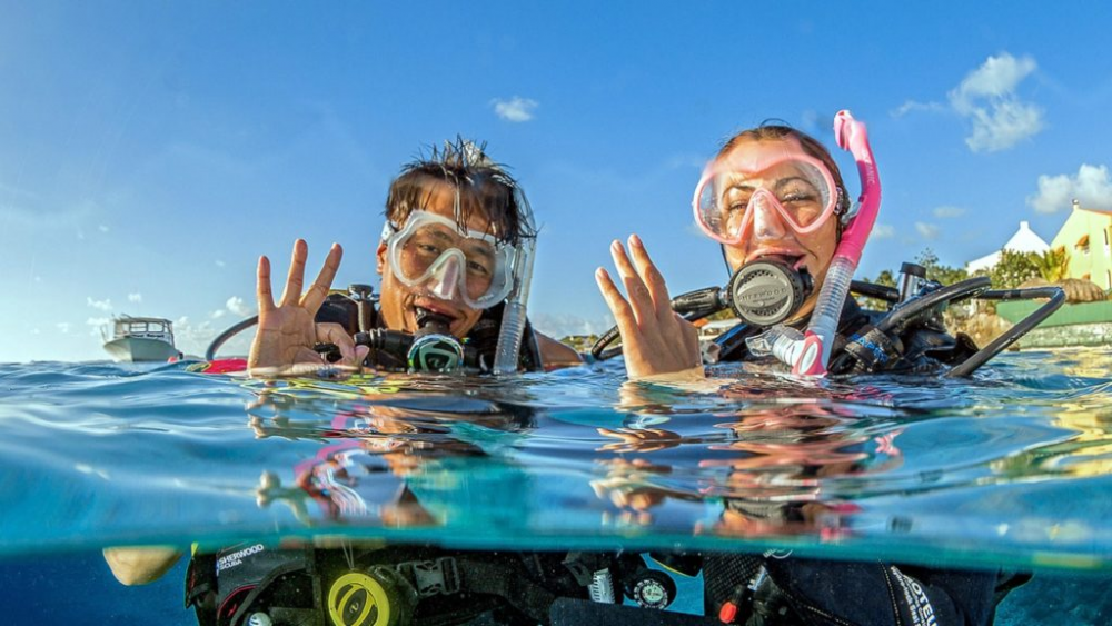 PADI Open Water Dive Course  Image